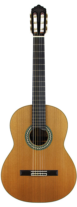 Classical Guitar Oberg-2010-small-front.jpg