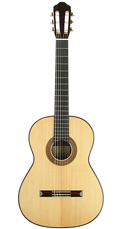 Classical Guitar gee 02 no421 front 75.jpg