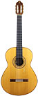 Guitar Jacobson-1987-small-front.jpg