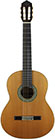 Guitar Oberg-2010-small-front.jpg