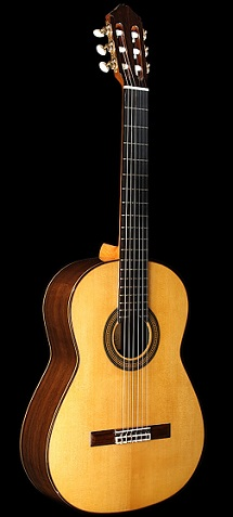 Classical Guitar tort 05 frony.jpg