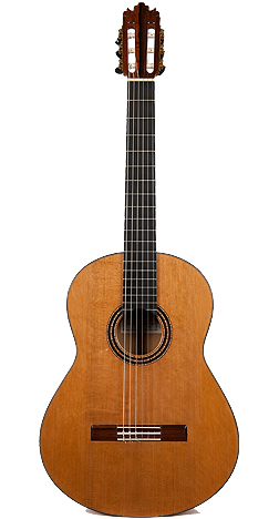 Flamenco Guitar 2008Dominguez-Front.jpg