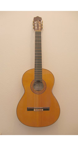 Flamenco Guitar ACF1B84.jpg