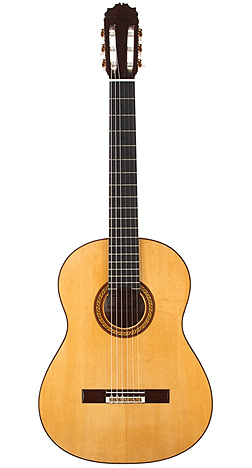Flamenco Guitar ACF1E50.jpg