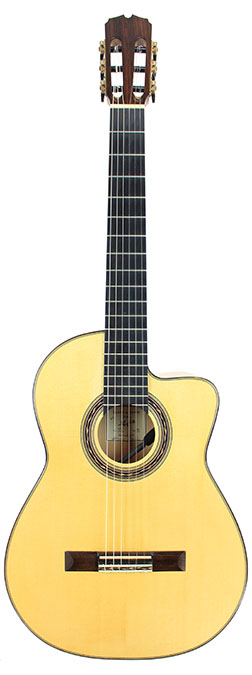 Flamenco Guitar Canin-2014-small-front.jpg