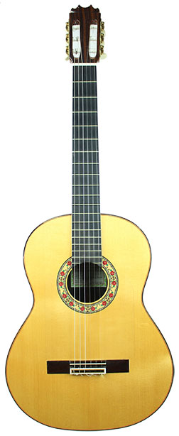Flamenco Guitar Sanchis-2010-small-front1.jpg