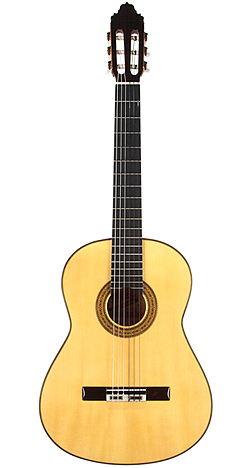 Flamenco Guitar bernal 05