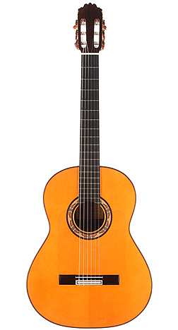 Flamenco Guitar carpio 04