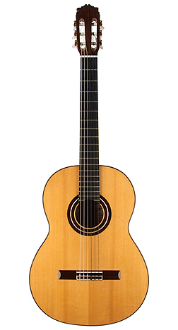 Flamenco Guitar gonzalez 02