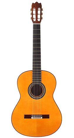 Flamenco Guitar miguel 02