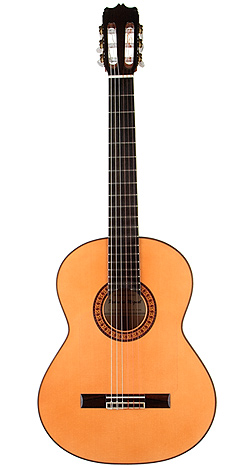 Flamenco Guitar p d miguel 06