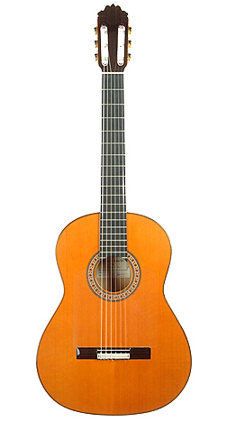 Flamenco Guitar sanchis 96 ALT LEVELS.jpg