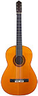Guitar Pena-1972-small-front.jpg