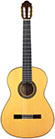 Guitar Plazuelo-2000-small-front.jpg